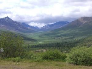 Tombstone mountains