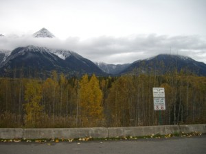 lunch stop in Smithers