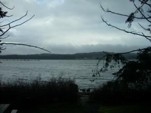 Baynes Sound Rest Area