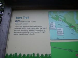 entering the Bog Trail