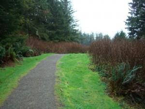 Nuu-chah-nulth trail