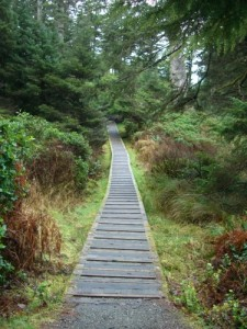 boardwalk on the Nuu-chah-nulth trail