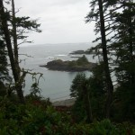 along the Nuu-chah-nulth trail