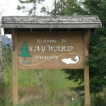 Sayward is a way's off the highway, but I thought the sign was pretty enough to photograph.