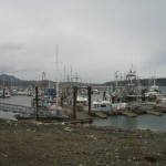 the port of Port McNeill :)