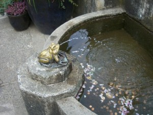 the frog fountain