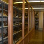 rows and rows of artefacts, awesome