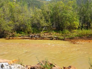 Red Creek (stinks of sulphur!)
