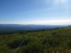 Ogilvie Ridge