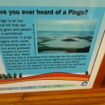 text about pingos (more on those in a later post)