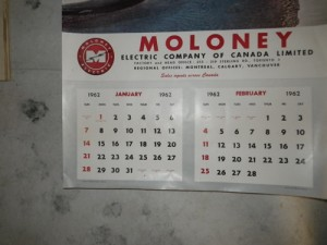 1962 calendar (I suspect it was planted here; seems in too good shape)