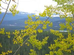 Maligne Valley