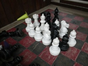the chess set from The Chamber of Secrets?