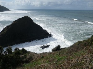 hiking up to the Heceta Lighthouse