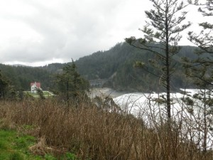from the base of the Heceta Lighthouse
