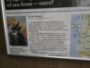 this San Francisco Chronicle about the missing Sea Lions is dated summer 2010