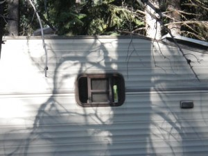 I bet that's their bathroom window :)