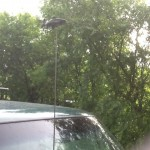 this whimsical addition to my radio antenna cracks me up!