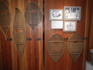 a variety of snowshoes