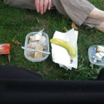 Grand-maman packed lunch. It doesn't look like much, but it got me to dinner, which is no small feat! We had crackers, cheese, almonds, a fig, half a banana, and a couple of bite-sized oatmeal chocolate chip cookies each, plus water. We ate on the grass in the shade of a big tree.