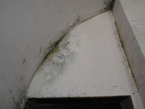 The fort is extremely damp, with mould being rampant. The public washrooms are soggy, too.