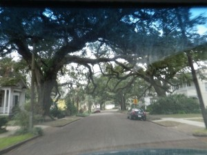 I wouldn't drive an RV in Mobile, too many narrow streets and low branches!