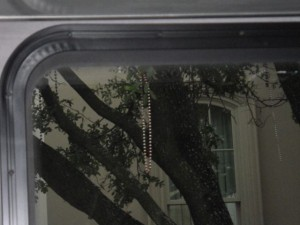 There were Mardi Gras beads hanging from the trees on St. Charles Avenue. I couldn't believe that nearly eight years ago, St. Charles Avenue was under 16 feet of water.