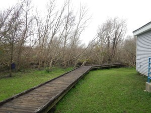 There's a boardwalk leading from the bathrooms/laundry through the swamp to the other side of the loop.