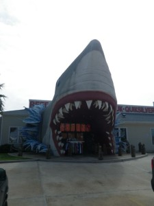 I missed a turn on the GPS and came upon this. Best store entrance ever.