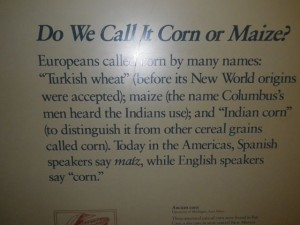 The Spanish say maiz, the English say corn, the French say maïs, the French-Canadian say blé d'inde (Indian wheat)