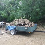 We put all the roof shingles into a trailer. They will be used by C&C for kindling.